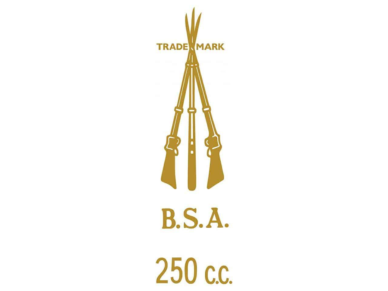 D50143A BSA 250cc piled arms transfer - Classic Bike Spares